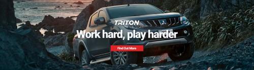 triton-banner